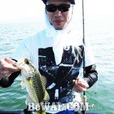 琵琶湖バスフィッシングガイドリポート~里様~ 28cm