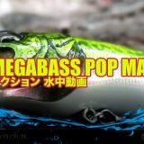 """Megabass – PopMax """"ポップマックス""""の水中映像"""