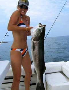 画像元© www.fishcrack.com3.jpg
