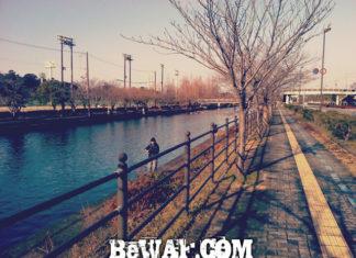 滋賀県 彦根旧港へ (ポイント場所紹介)