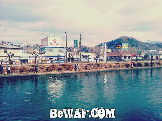 hikone-bass-fishing-05