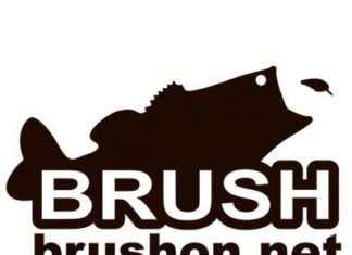 BRUSH琵琶湖 ~デカバス釣果情報~