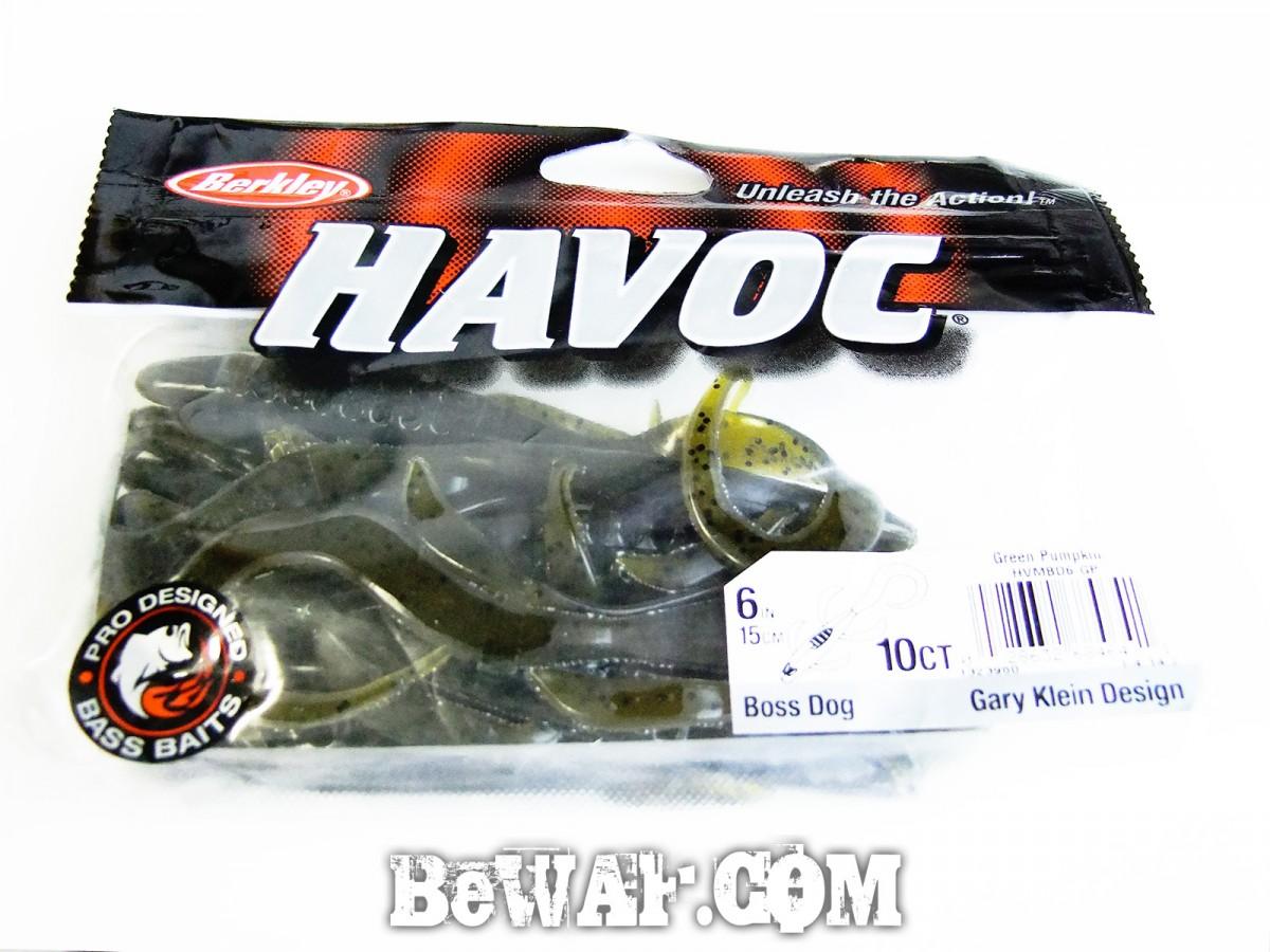 havoc-boss-dog