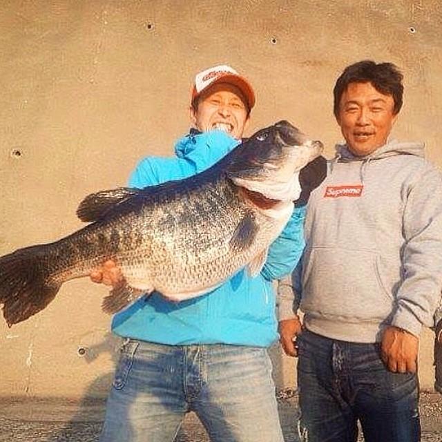 ikehara big bass japan