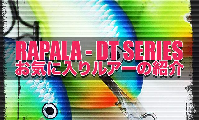 ラパラ DTシリーズ写真