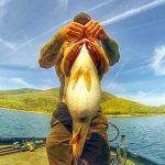 7300gのデカバス釣れる!! スキナー湖 (アメリカ) 7