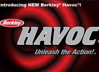 Berkley – Havoc Sick Fish (ビワエフストア)