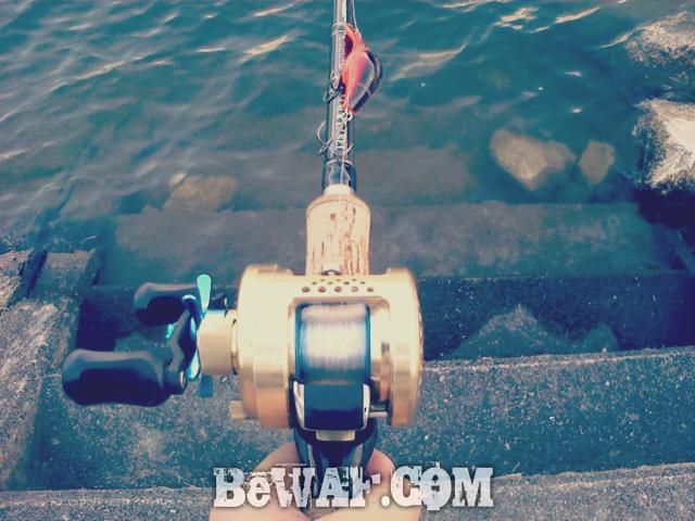 setagawa-bass-chouka-1