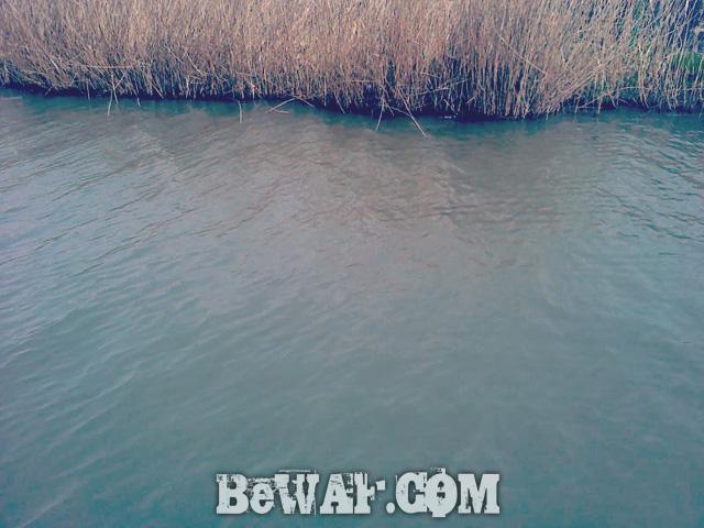 biwako bass chouka 4gatu12nichi-5