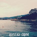 琵琶湖南湖おすすめレンタルボート (ビワコマリン南店) 3
