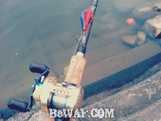setagawa bass chouka-4