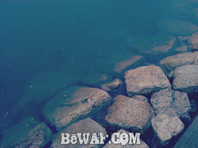 setagawa bass chouka biwako-2