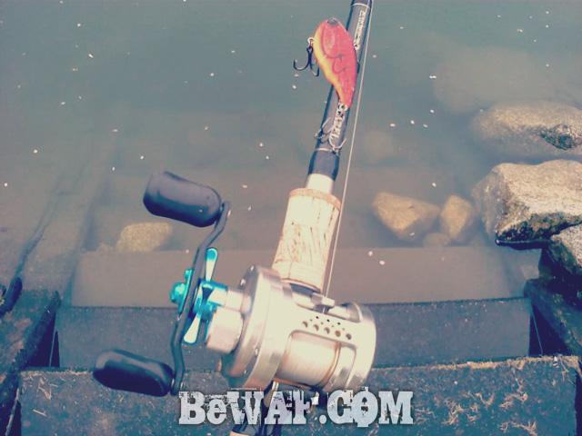 setagawa bass chouka biwako-3