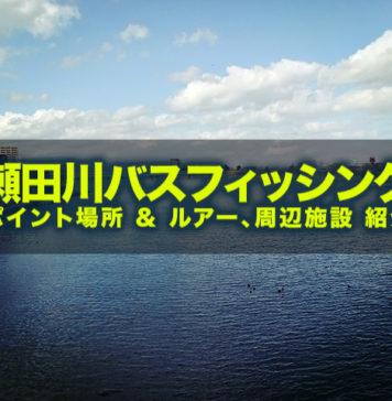 瀬田川バスフィッシング ポイント場所紹介 写真