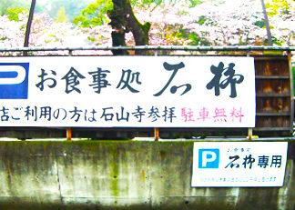 瀬田川へ  (2015年 4月1日)