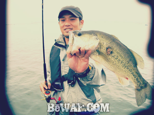 biwako-bass-fishing-guide-2015-chouka-16