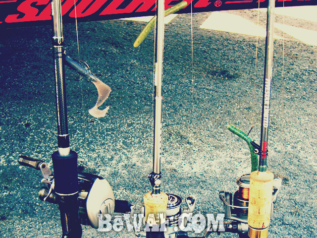 biwako bassfishing guide chouka 2015 biwako 2