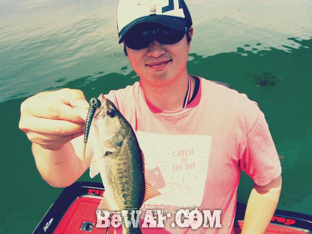 biwako bassfishing guide chouka 2015 biwako 5