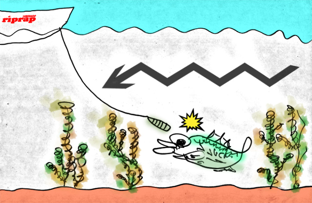 biwako bassfishing guide chouka 2015 biwako 7