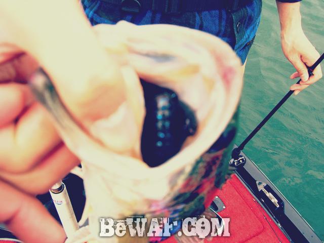 biwako guide chouka blog3
