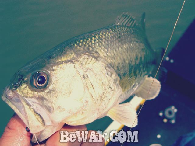 nishinoko bass fishing guide 2015 chouka 11