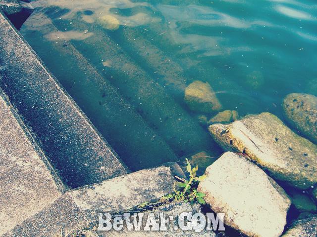 setagawa biwako bass turi chouka 2