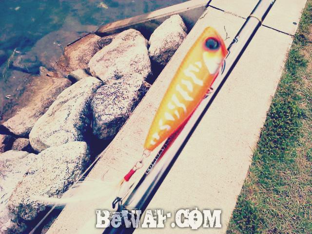 1 setagawa bass chouka