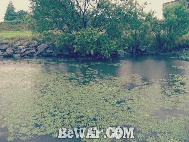 biwako bass turi chouka 6