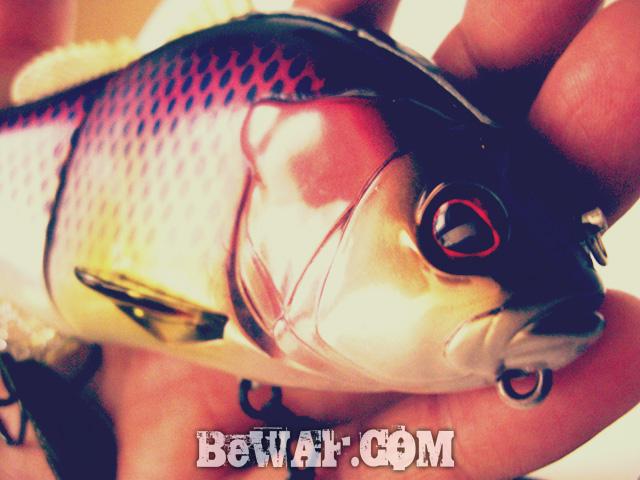 biwako bass turi chouka 7