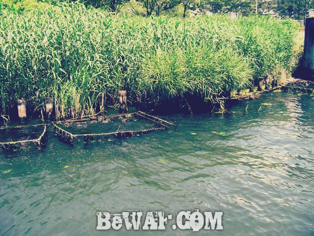 biwako black bass 60 chouka 14