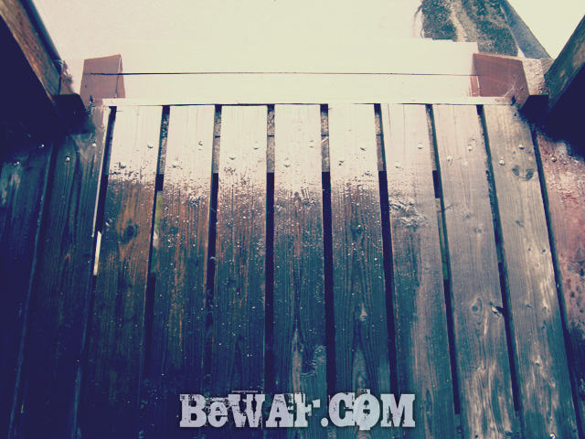 biwako black bass 60 chouka 4