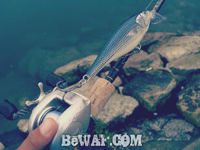setagawa bass chouka 2