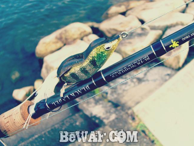 setagawa bass turi chouka 1