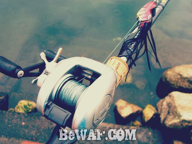 setagawa bass turi chouka 2