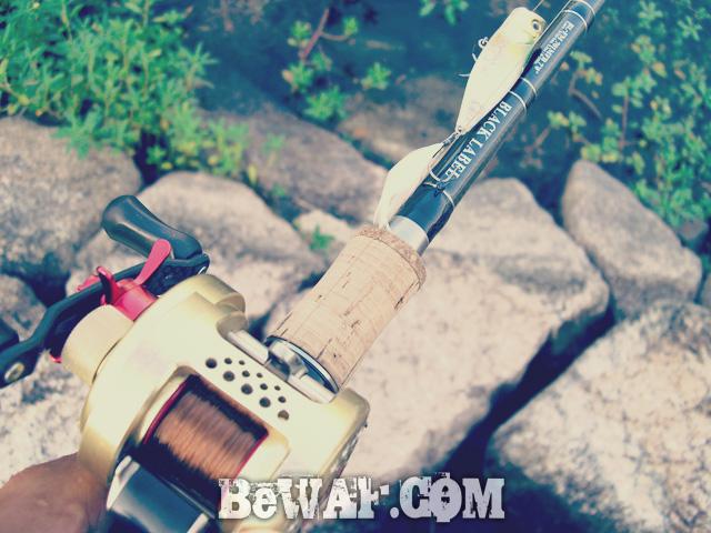 1.setagwa bass chouka biwako