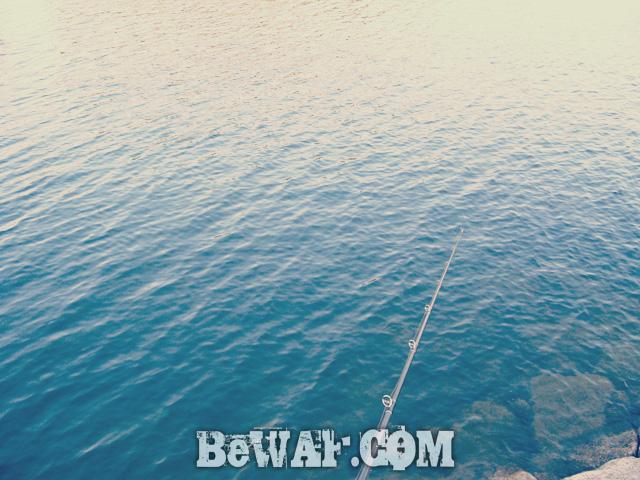 2.setagwa bass chouka biwako