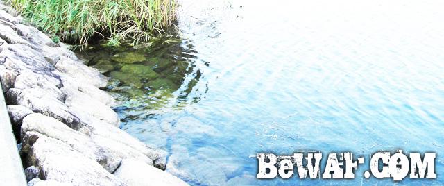 5.setagwa bass chouka biwako