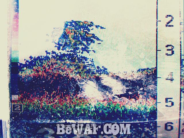 biwako bass chouka 7gatu11