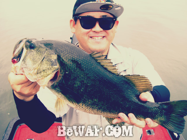 biwako bass fishing guide chouka 77