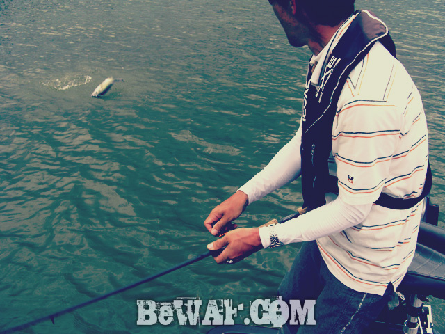 biwako bass fishing guide kakuyasu 25