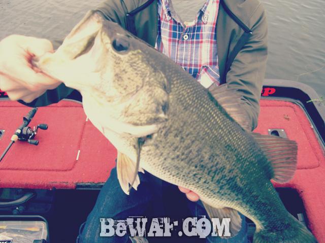biwako bass fishingu guide chouka 10