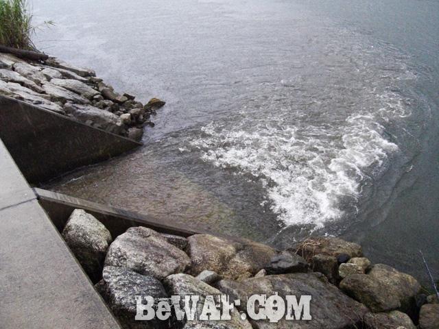 biwako bass turino blog map chouka 3