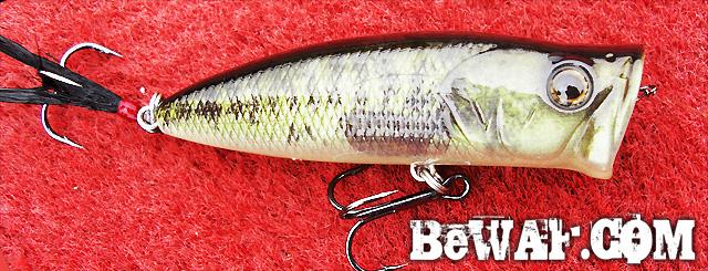 biwako bassfishig guide service 2015 11
