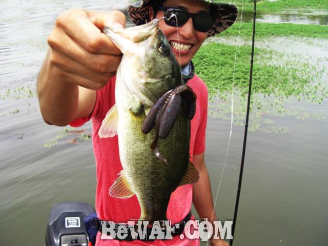 biwako bassfishig guide service 2015 13
