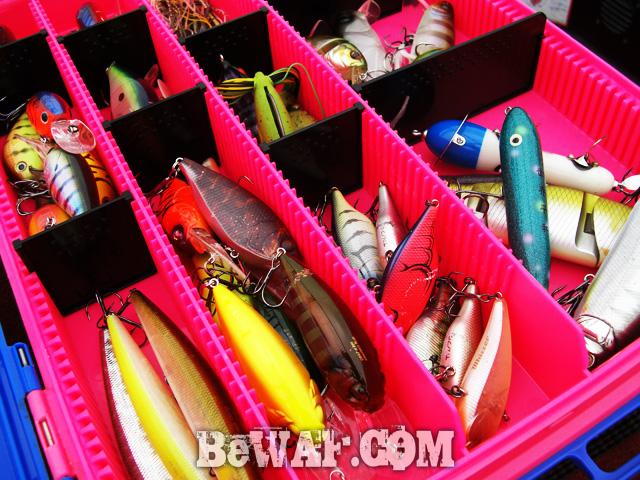 biwako bassfishig guide service 2015 2