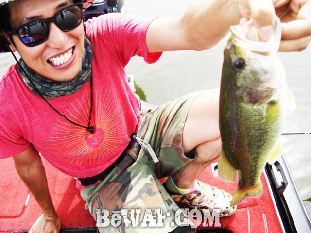 biwako bassfishig guide service 2015 20