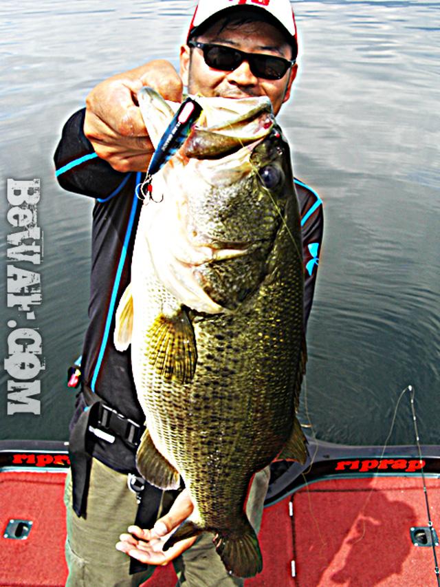 biwako bassfishing guide blog 2015 chouka 12