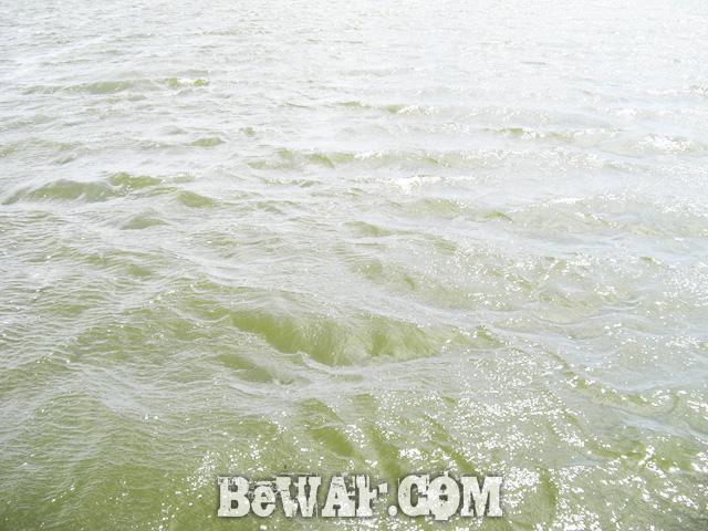biwako bassfishing guide blog 2015 chouka 18