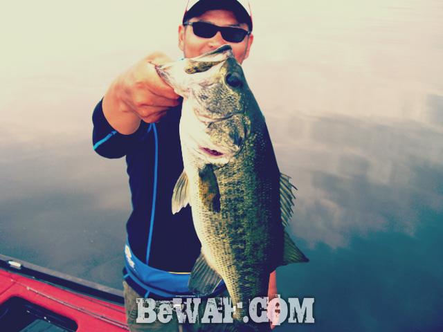 biwako bassfishing guide blog 2015 chouka 8