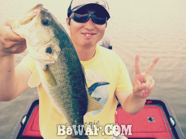 biwako nishinoko ibanaiko bass fishing guide chouka 13